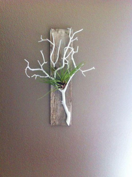 planta ornamental para decorar en pared