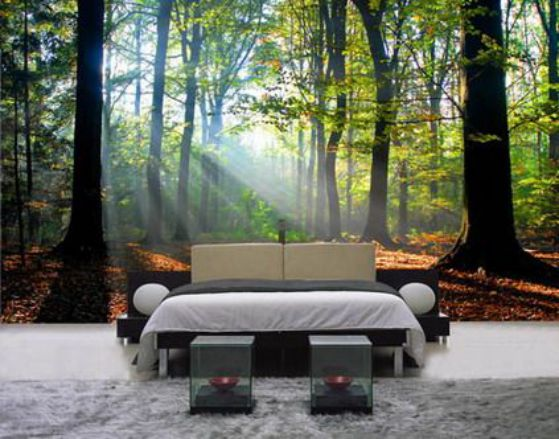 foto de naturaleza para habitaciones